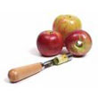 apple_corer.jpg